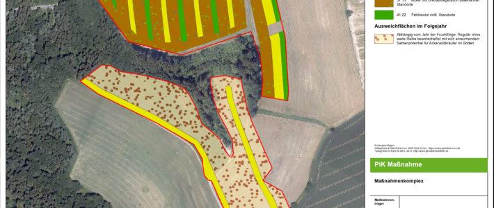 PiK-Modellvorhaben: Lichtacker und Blühstreifen auf wechselnden Standorten zum Erhalt von Ackerflächen als Ökokontomaßnahme. Ein Beispiel aus der Praxis.